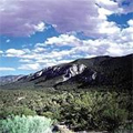 Mount Charleston Tour