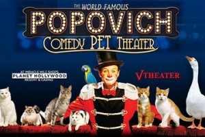 Comedy Pet Theater Vegas