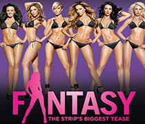 Fantasy Las Vegas Adult Show Tickets