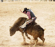 Professional Bull Riders Las Vegas Tickets